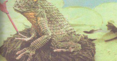 фото Царевна лягушка