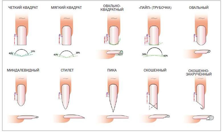 Фото разновидности форм для ногтей