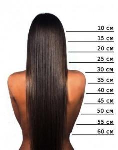 фото как опрделить длину волос
