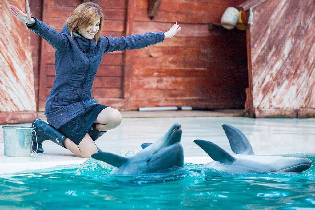 Фото прокурор и дельфины