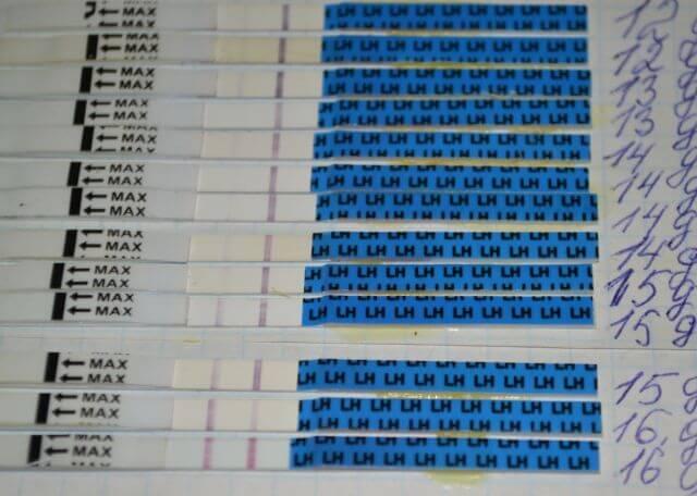 """Фото результаты проведения теста на овуляцию """"Я родился"""""""