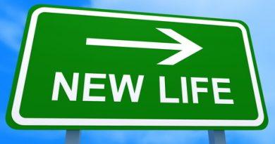 Новая жизнь в США